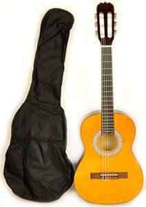 Omega Classical Acoustic